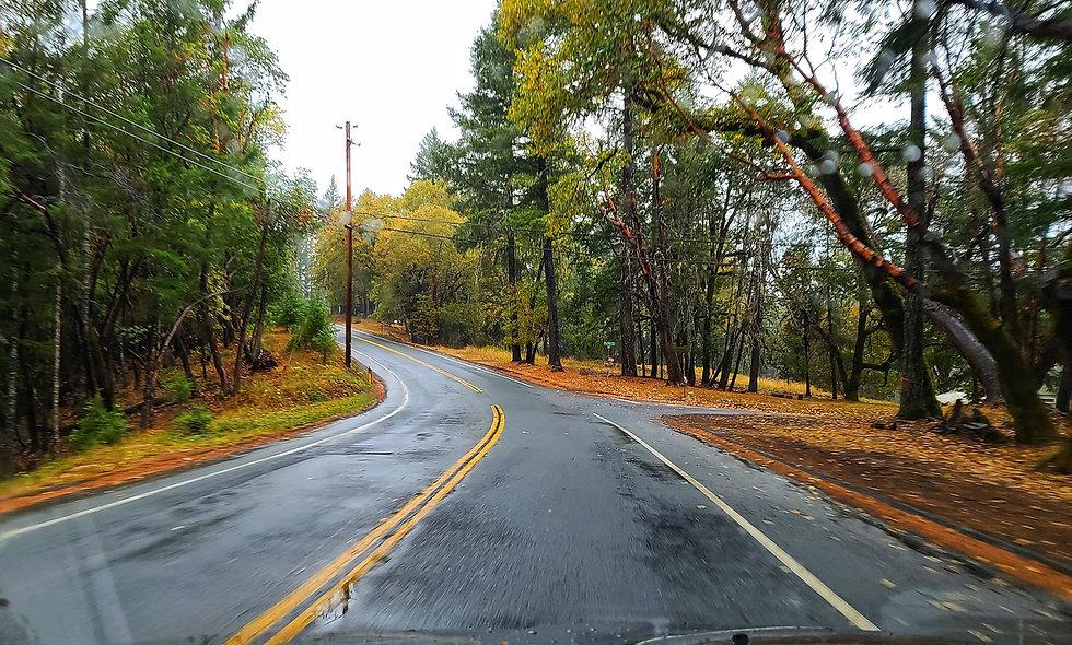 Mendocino County Road 5.jpg