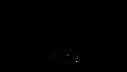 01-11 Cactus-Visor-06.png