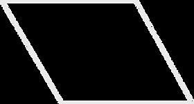 Pic_Diamond logo (wide left silver nofil