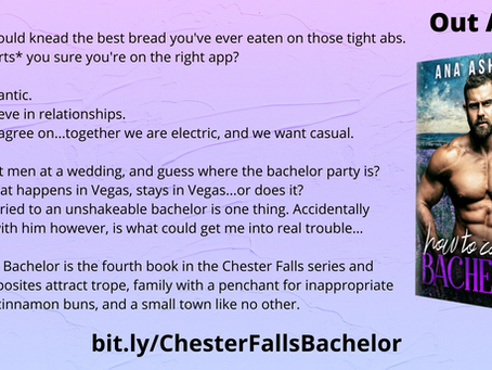 Blurb reveal - What's our Bachelor about?