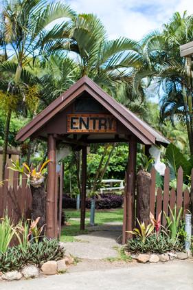 Island Encounters Photo-44.jpg