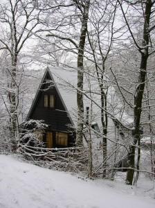 winter215-007-224x300