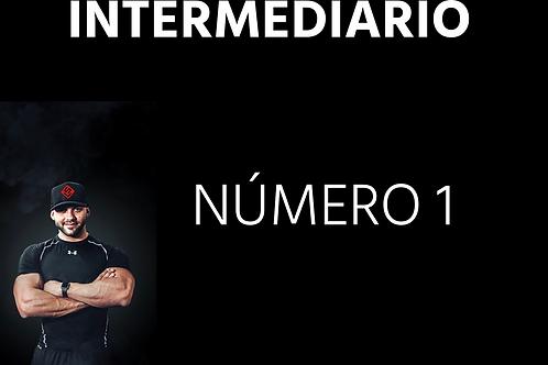 INTERMEDIÁRIO - número 01