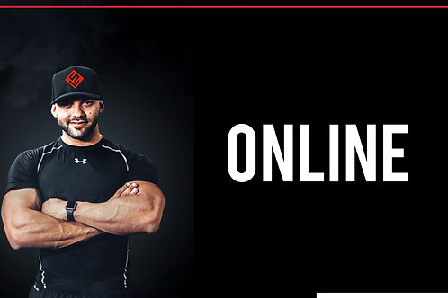 Seis protocolos de treino - Online