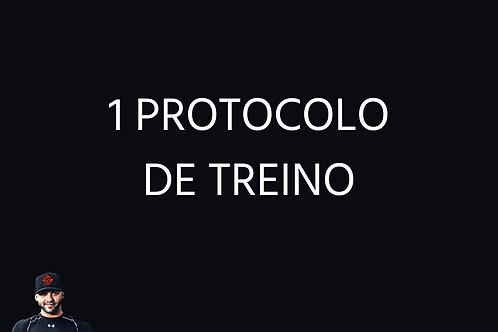 Um protocolo de treino - Online