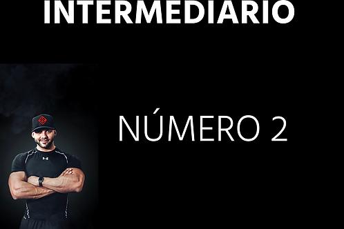 INTERMEDIÁRIO - Número 02
