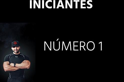 INICIANTES - Número 01