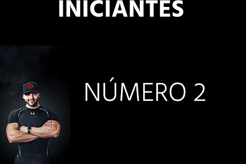 INICIANTES - Número 02