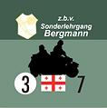 Bergmann 2.png