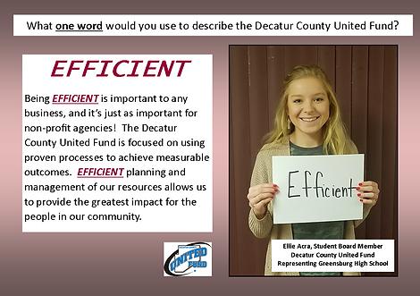 Ellie - efficient.png