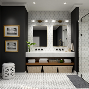 Black and white bathroom design 3D