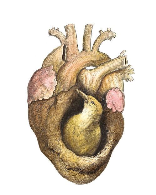 coração de barro - poster