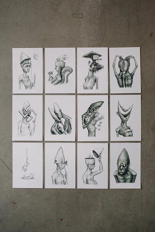 12 cards - kit 2