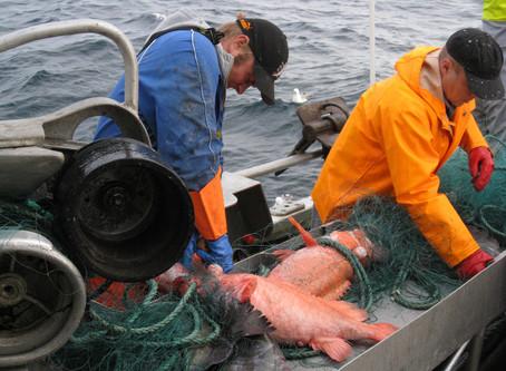 På fiske fra Helligvær i all slags vær