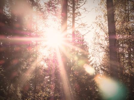 Lens%20flare_edited.jpg
