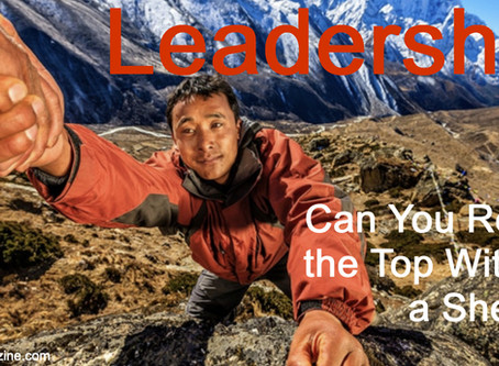 "Importance of Mentored ""Sherpa"" Leadership Development"