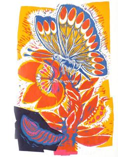 Paradiesfalter 1987 76 x 53 cm