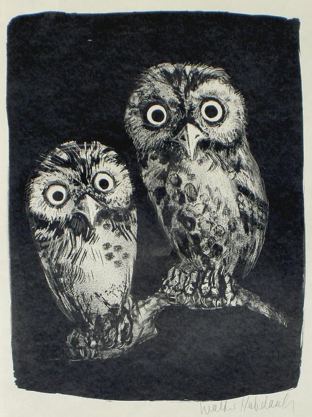 Eulen 1950 61,5 x 43,5 cm