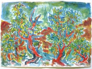 Camanoglio, Tessin 1976 67 x 97 cm