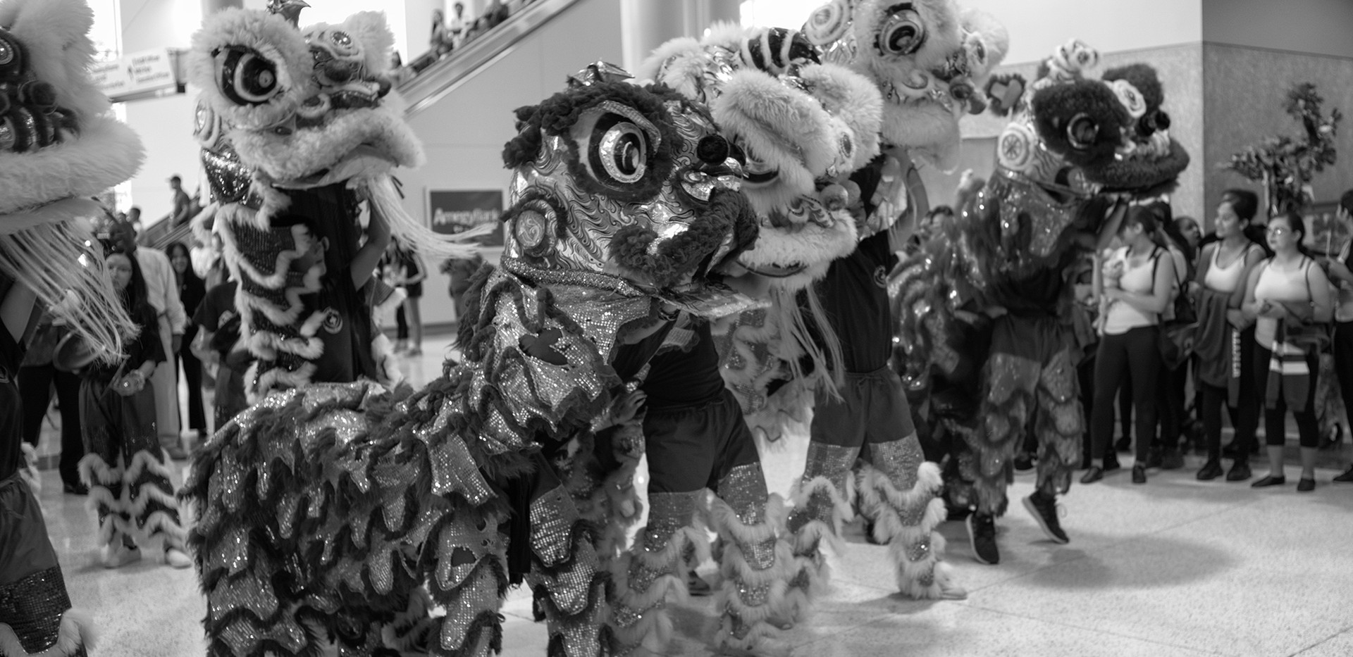11-dragons.jpg