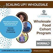 Scaling Up!! Wholesale Cohort Awareness.