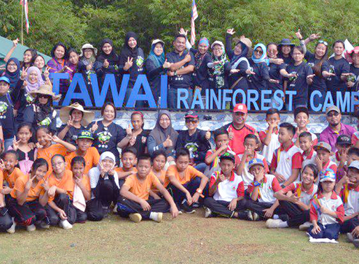 Tawai Rainforest Camp : Aktiviti Penanaman Semula Pokok