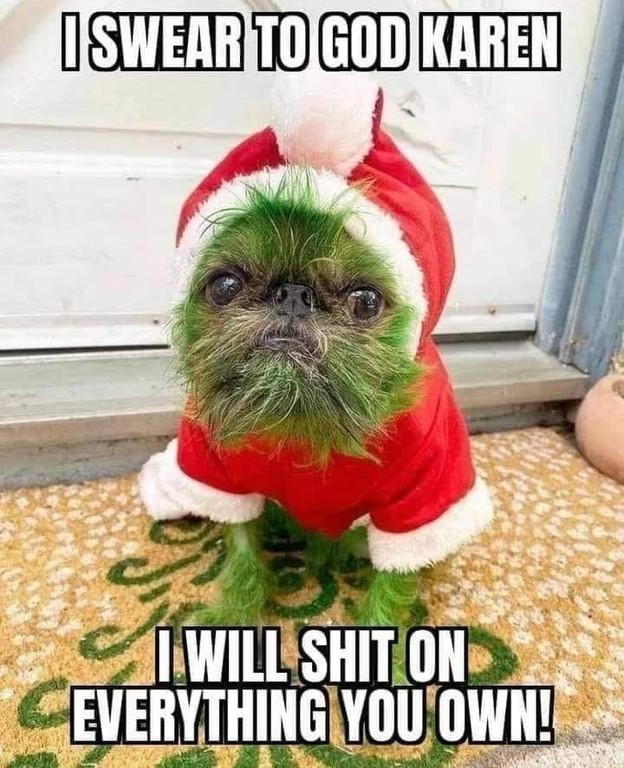 Tis' the season for Christmas Memes🤣