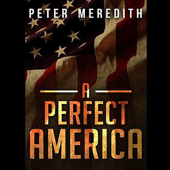 A Perfect America Book-Website Tab.jpg