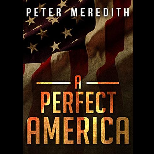 Autographed-A Perfect America Novel