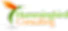 hummingbirdconsulting-logo1.png