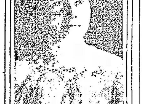 Eva Erb