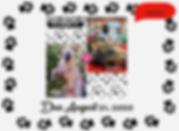 Screen Shot 2020-07-25 at 12.40.07 PM.pn