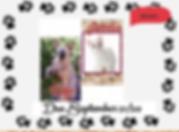 Screen Shot 2020-07-25 at 12.17.02 PM.pn