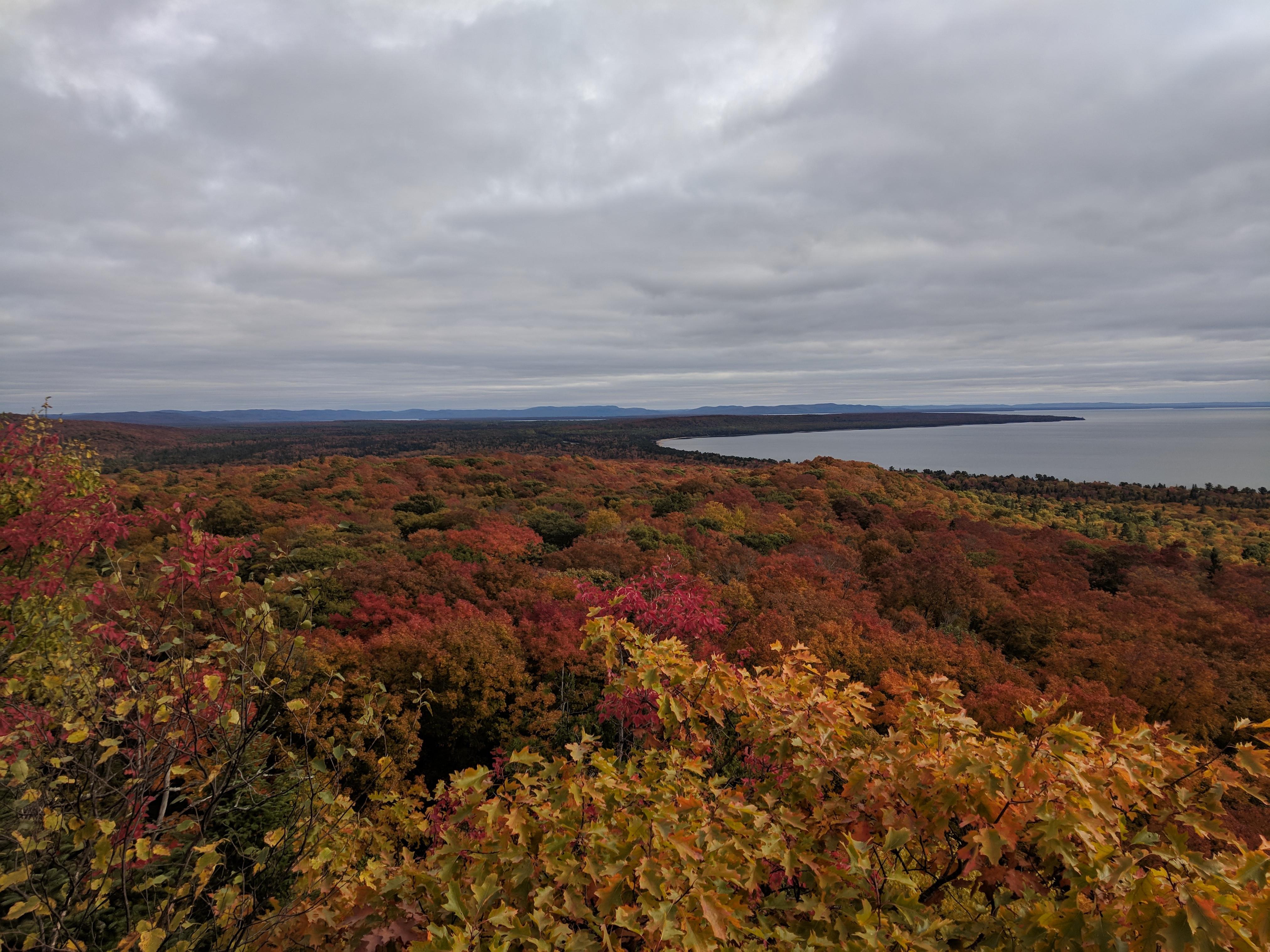 FALLGOMA: Fall colours - Pancake