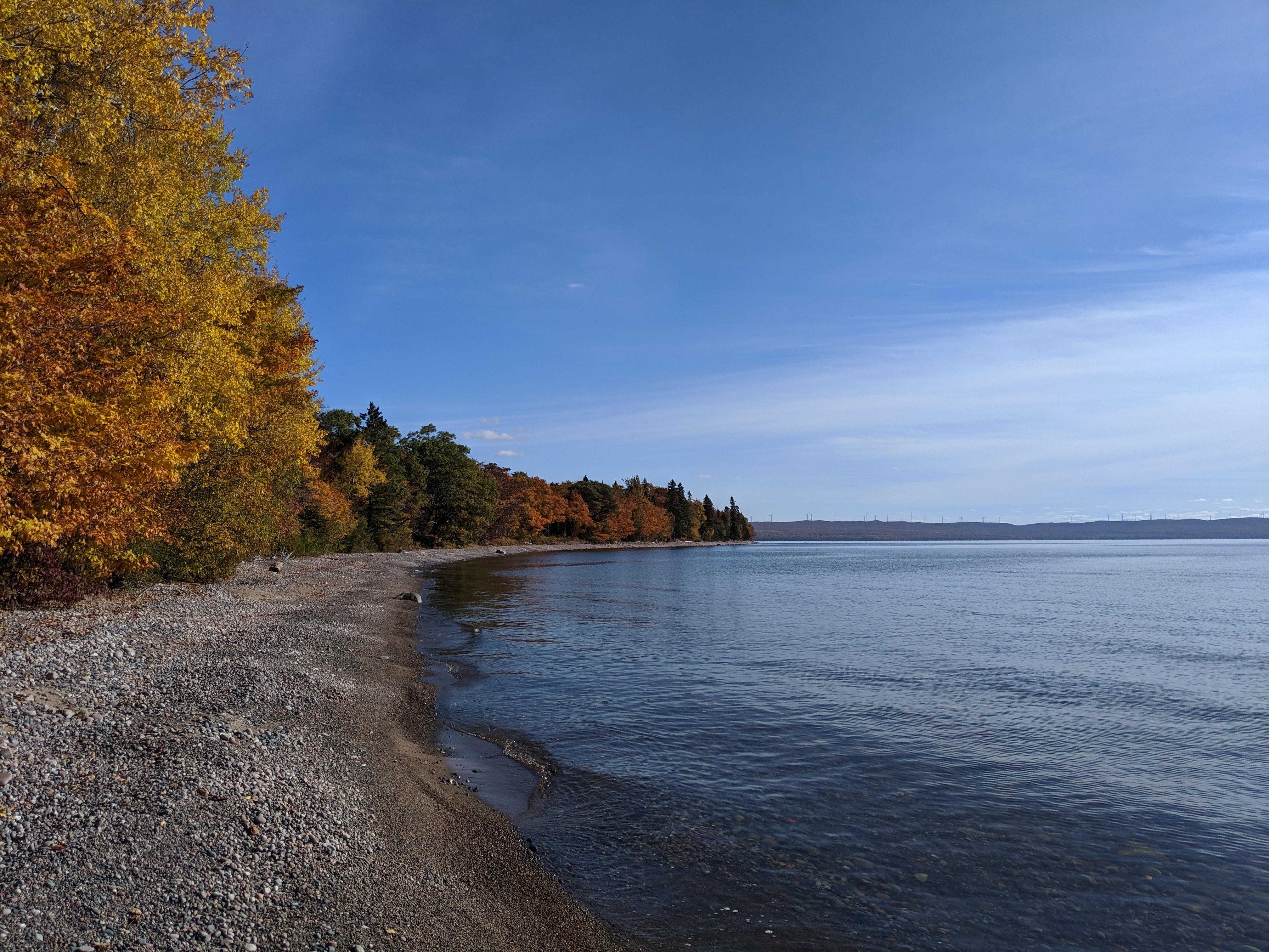 FALLGOMA: Fall colours shoreline tour