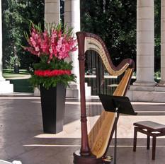 Harp at Cheeseman Park Pavilion - Denver CO