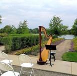 Harp at Washington Park - Denver CO