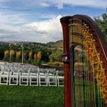 Harp at The Manor House Backyard | Littleton CO