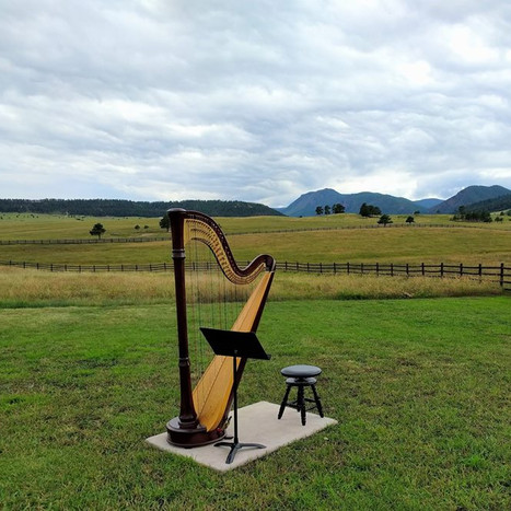 Harp at Spruce Mountain Ranch - Larkspur CO