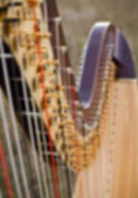 Harp belonging to Mary Keener.  Photo by James Christianson Photographer