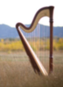 Photo of Mary Keener's harp taken in Boulder Colorado