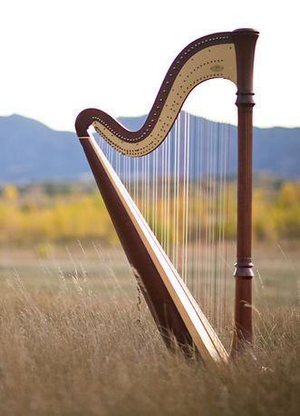Photo of Mary Keener's harp taken in Boulder Colorado