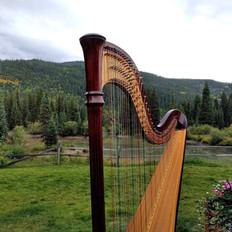 Harp at Ski Tip Lodge - Keystone CO