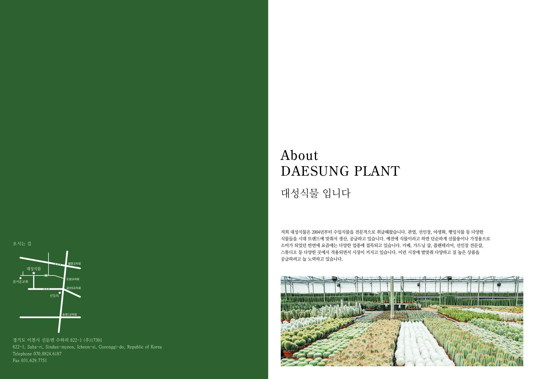 daesung catalog2