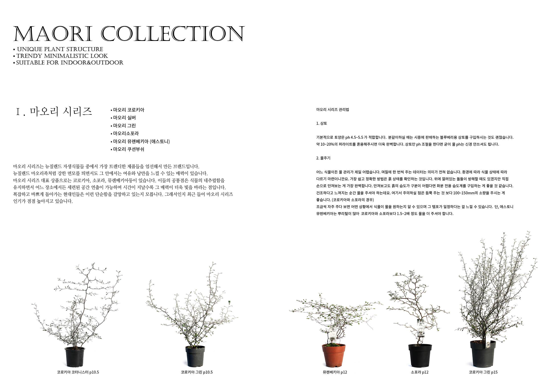 daesung catalog5