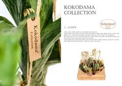daesung catalog13