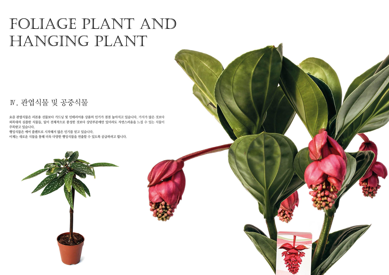 daesung catalog11
