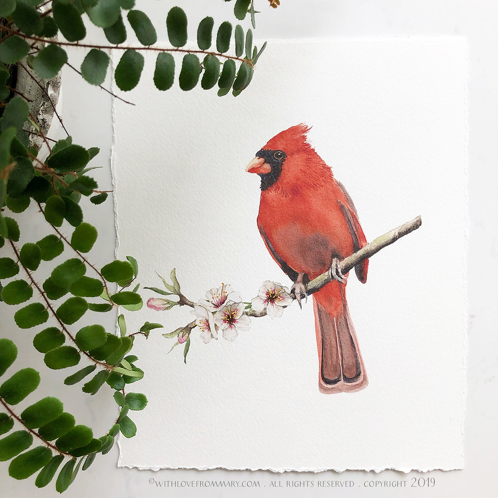 CARDINAL PAINTING IN WATERCOLOR