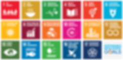 SDG_Poster_EN.png