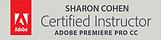 שרון כהן מרצה מוסמך Adobe הפקות קורס צילום עריכת וידאו